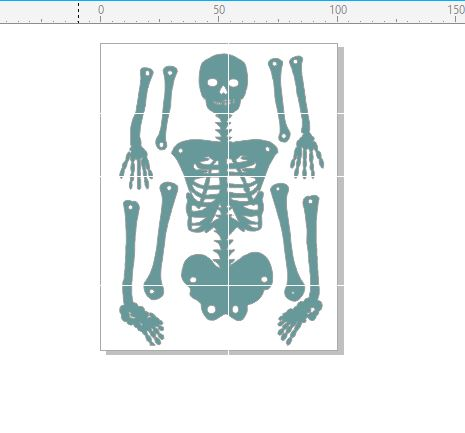 Human Skeleton movable parts  100 x 130mm, requires brads to put